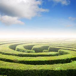 stock-maze