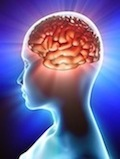 Brain-xs