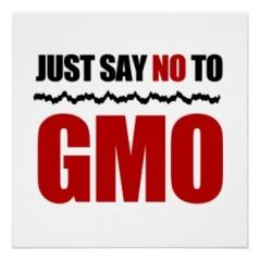 no to GMO's