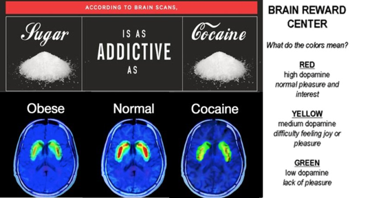 SUGAR vs COCAINE