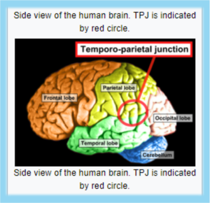 Schizophrenia - Temporoparietal Junction