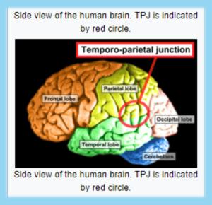 Schizophrenia - Temporoparietal Junction